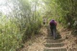 Maolin_Valey_Waterfall_023_10292016 - Mom continuing to climb up steps flanked by bamboo along the way up to the Maolin Valley Waterfall