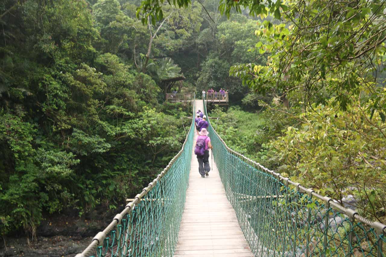Mom following the purple-shirted hiking group across the first suspension bridge