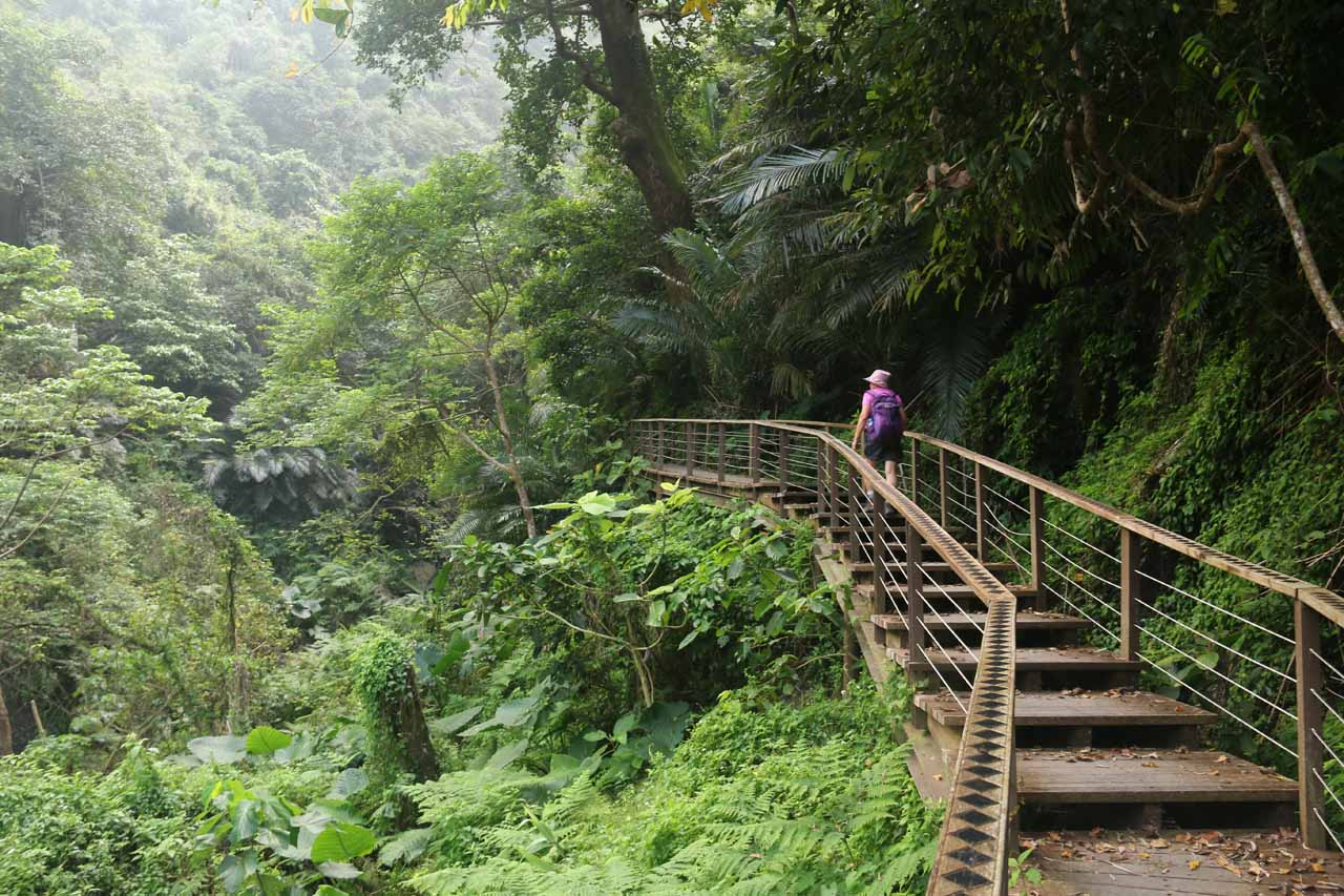 Continuing beyond the second suspension bridge on the Luomusi Trail