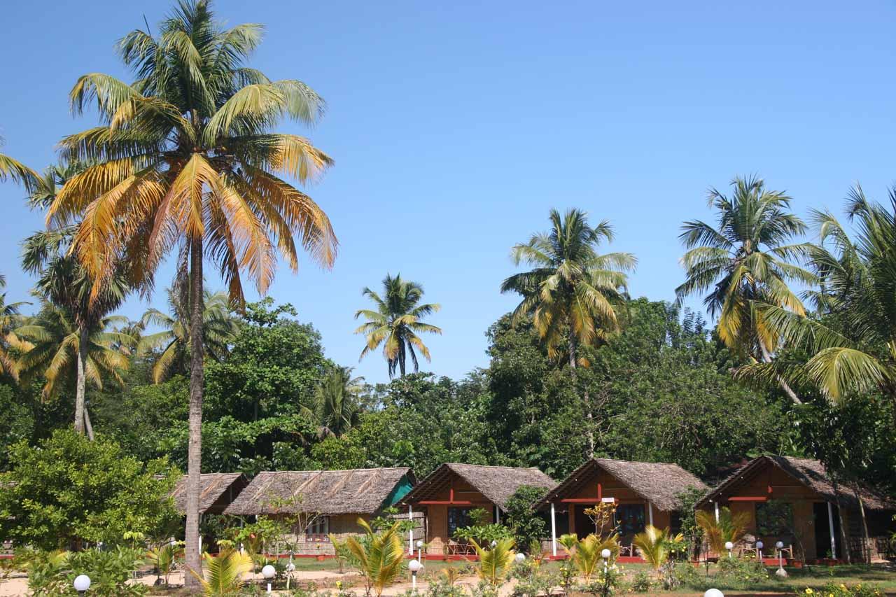 At our accommodation near Marari Beach