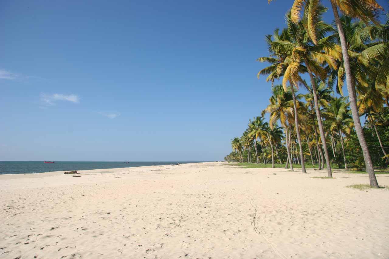 Kicking back at Marari Beach in Kerala