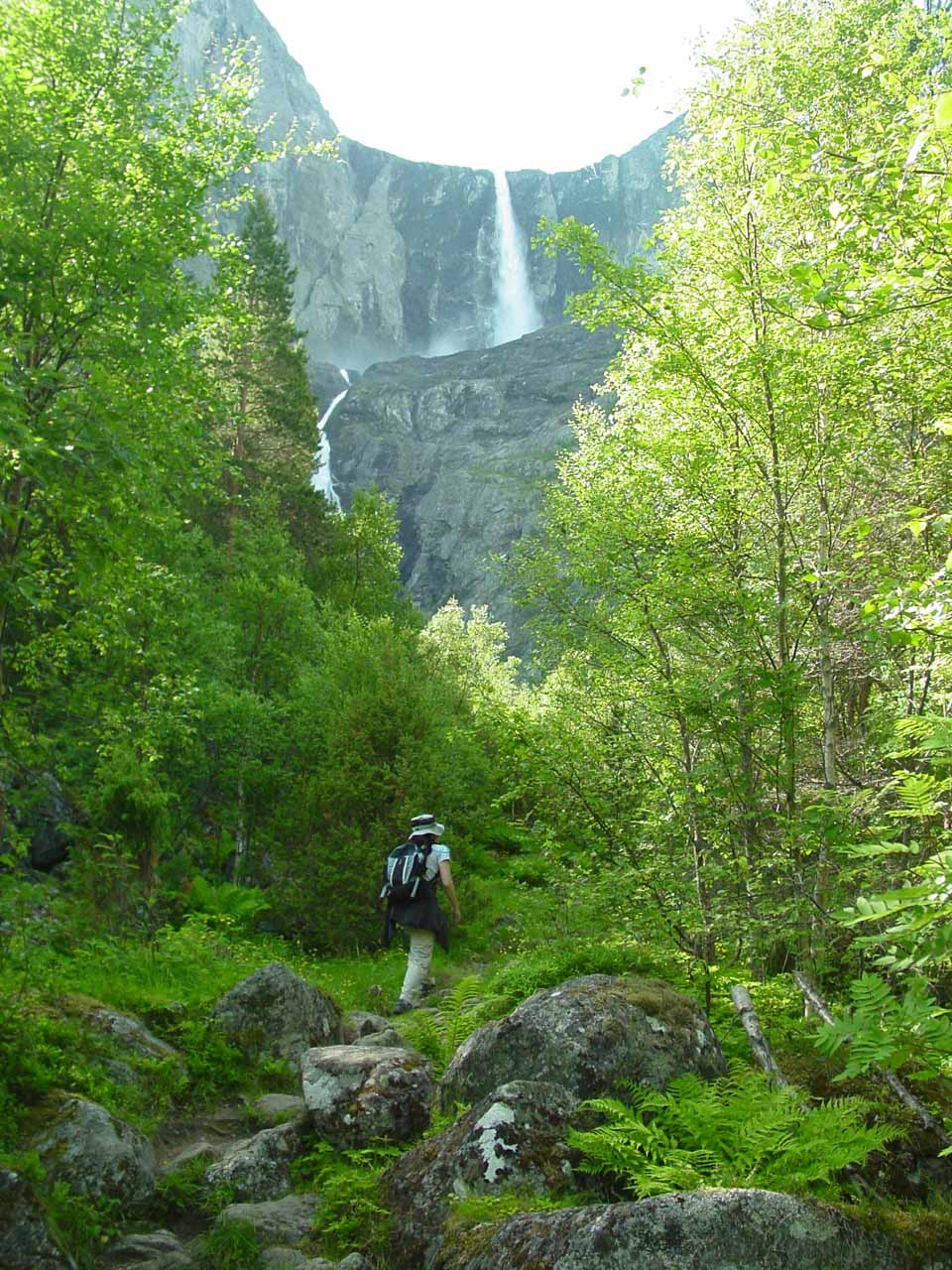 Julie continuing on the Mardalsfossen Trail with the falls seen up ahead through the trees