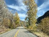 Maroon_Creek_Road_025_iPhone_10192020 - Driving through some remnant Fall colors along the Maroon Creek Road