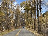 Maroon_Creek_Road_028_iPhone_10192020 - Still more impressive Fall colors along the Maroon Creek Road as we were leaving the Maroon Bells