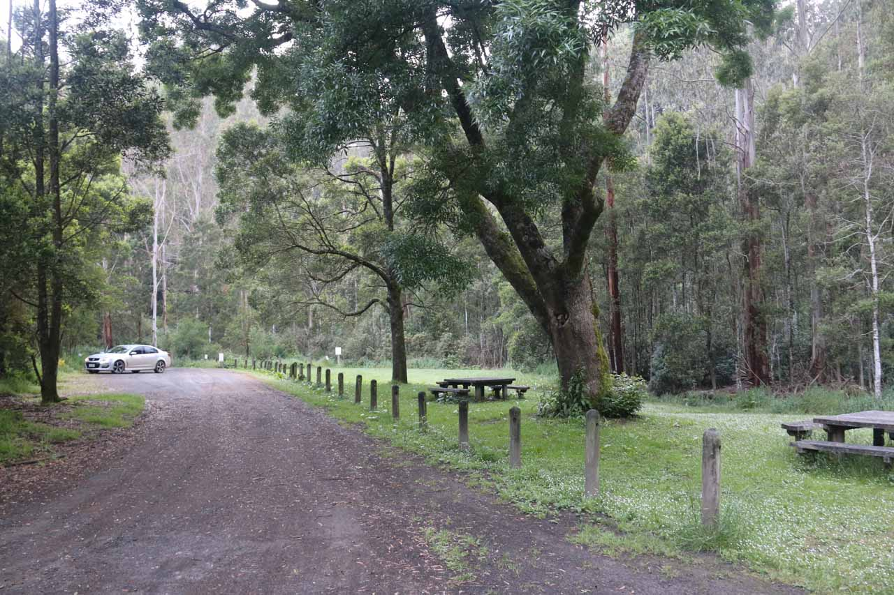 The car park at the end of the Barham River Road for Marriners Falls