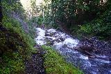 Martha_Falls_041_06212021 - Looking further downstream from the one-sided footbridge over Martha Creek before Martha Falls
