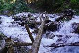 Martha_Falls_045_06212021 - Looking along the one-sided log bridge across Martha Creek fronting Martha Falls