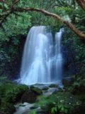 Matai_Falls_018_12012004 - Matai Falls