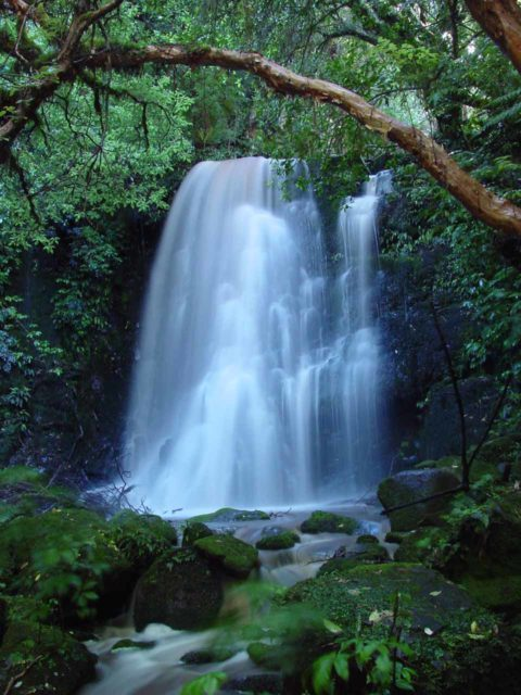 An example of showing the grace and tranquility of Matai Falls on a 2 megapixel Sony Cybershot point-and-shoot camera back in 2004 when I was tinkering with how to employ waterfall photography