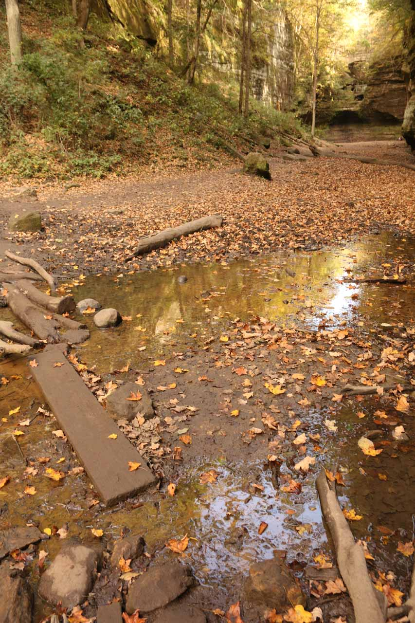 Muddy stream crossing to Cascade Falls