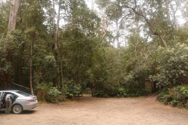 Mathinna_Falls_17_004_11242017 - The car park for the Mathinna Falls Reserve