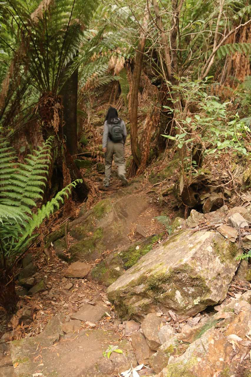 The track got rougher towards the end as it narrowed and involved some rocky terrain