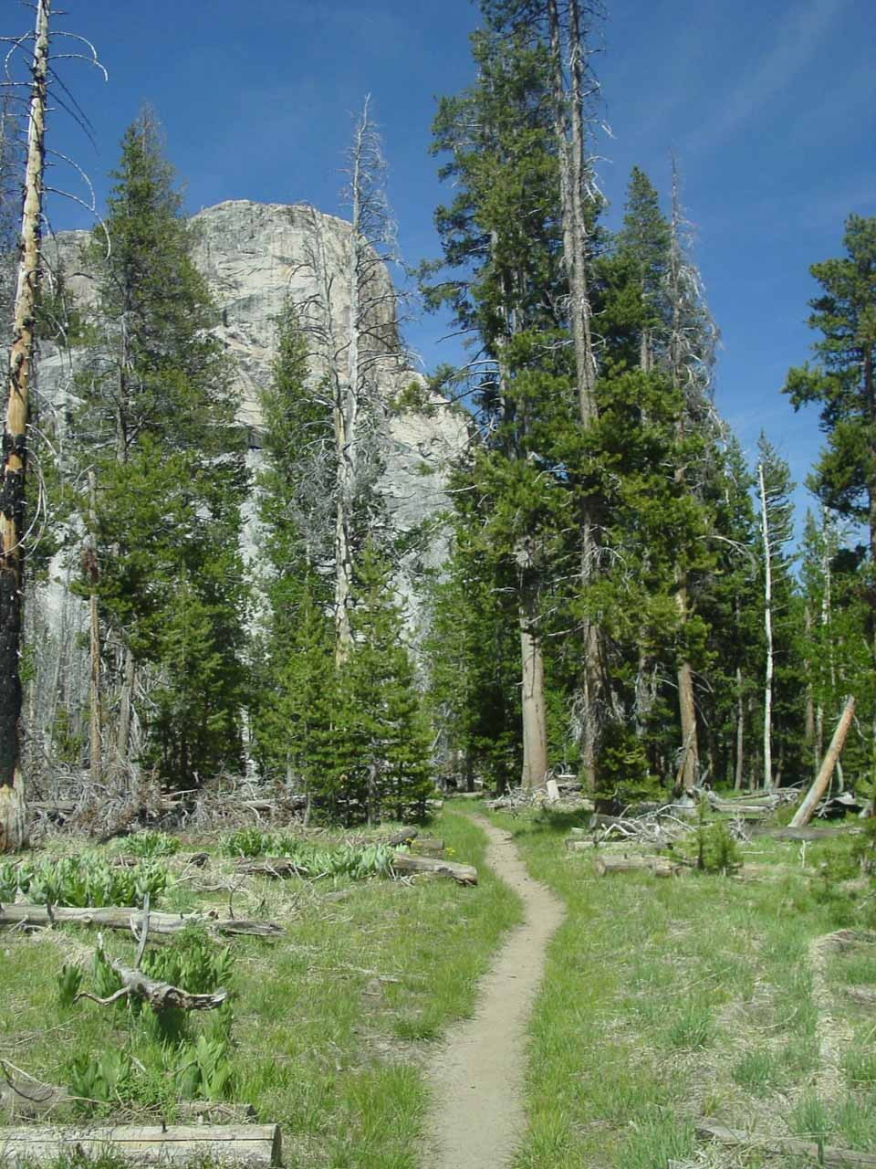 On the calm section of trail as we bypassed California Falls (having seen it the previous week)