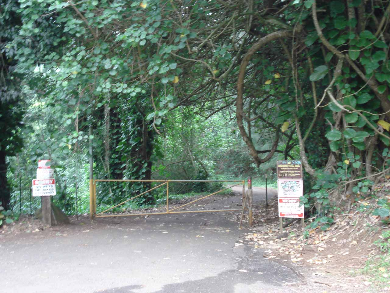 The trail is behind that gate