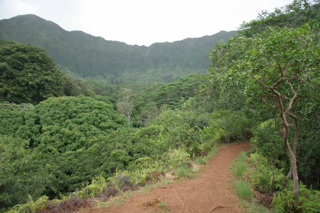 Trail providing a view of the Ko'olau Range and some of its fluted cliffs