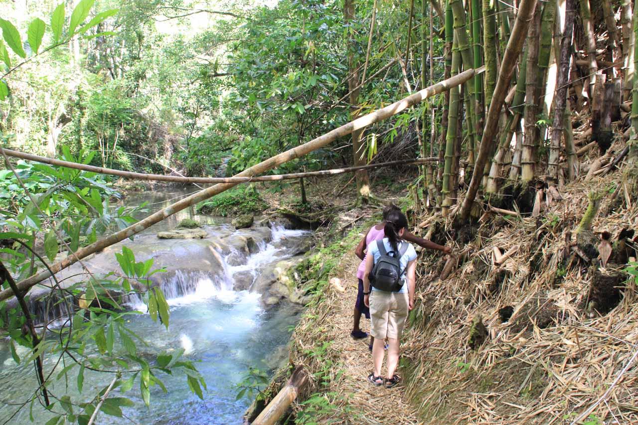Walking alongside the river