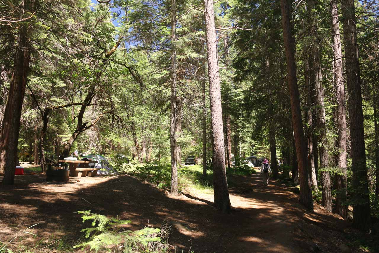 This was the trail skirting alongside Fowler's Campground