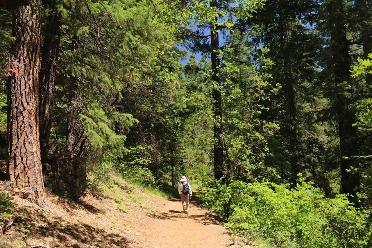 Beyond Fowler's Campground, the trail went from pavement to dirt