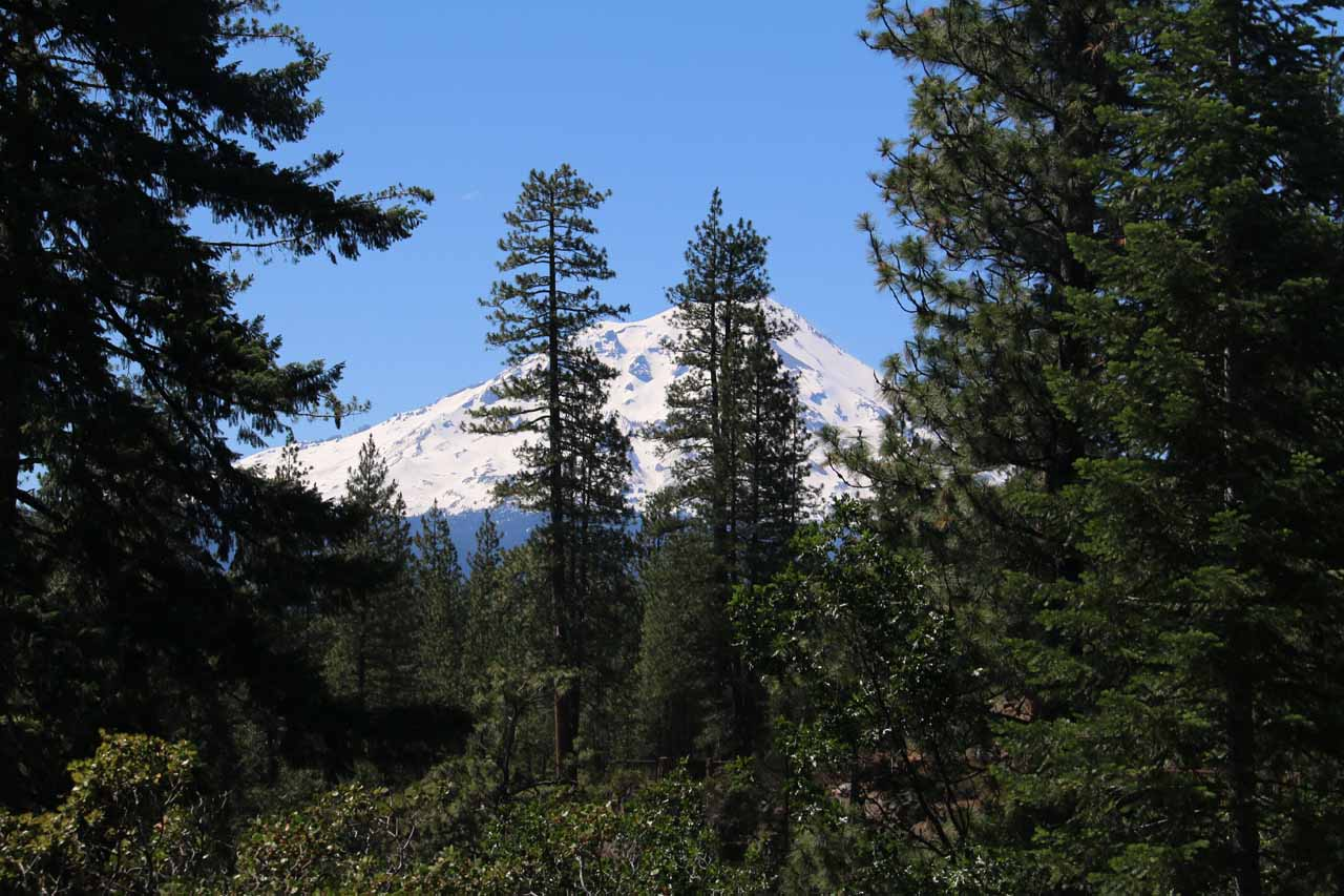 Looking back towards Mt Shasta from the trail between the Middle and Upper Falls