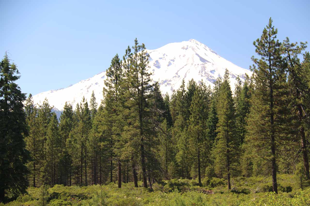 This was the view of the southern slopes of Mt Shasta from the parking lot for the Middle McCloud Falls. This view turned out to be better than the one we got from the trail