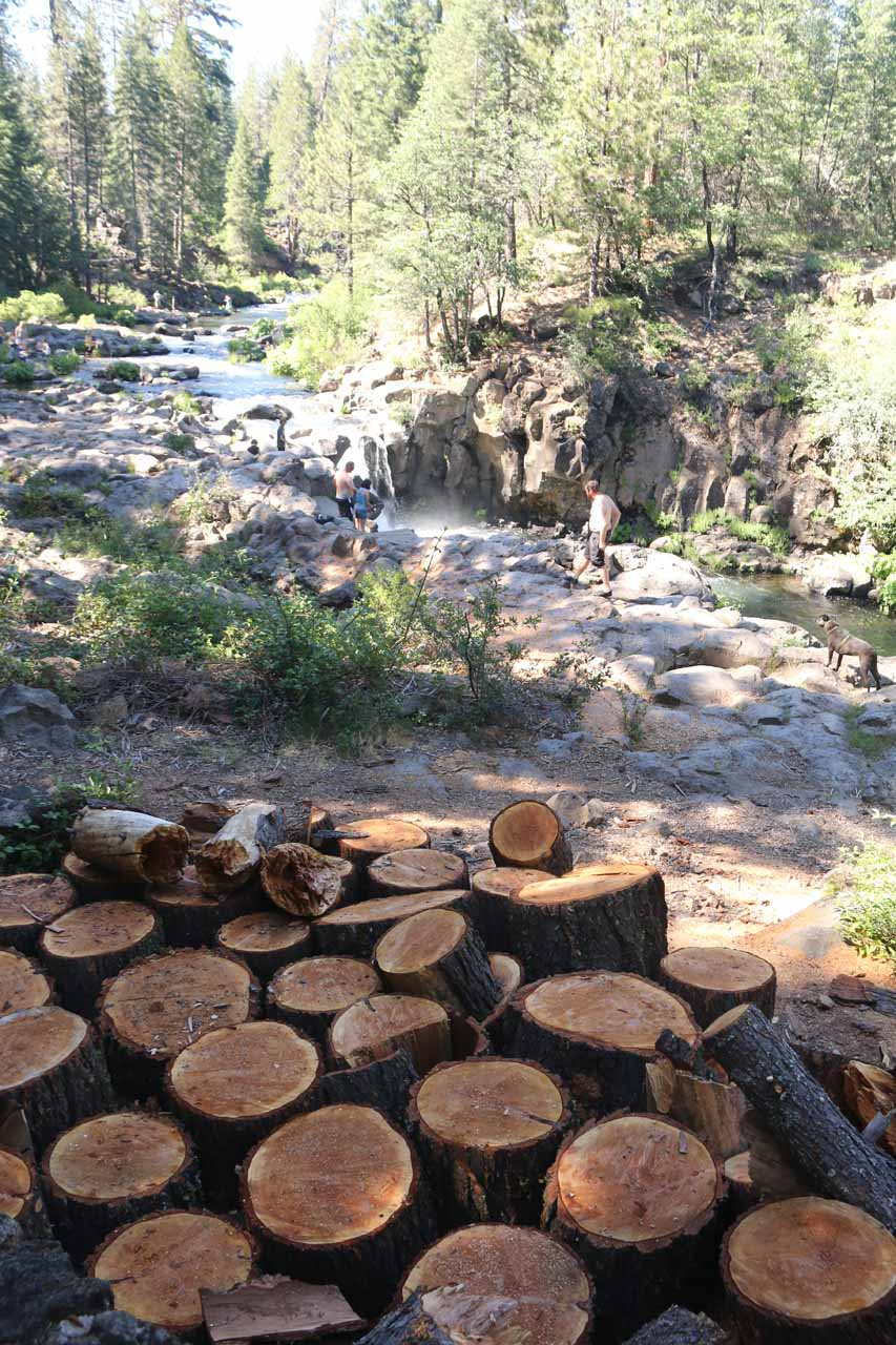 Back at the Lower McCloud Falls, where for some reason, we noticed this cluster of logged tree pieces