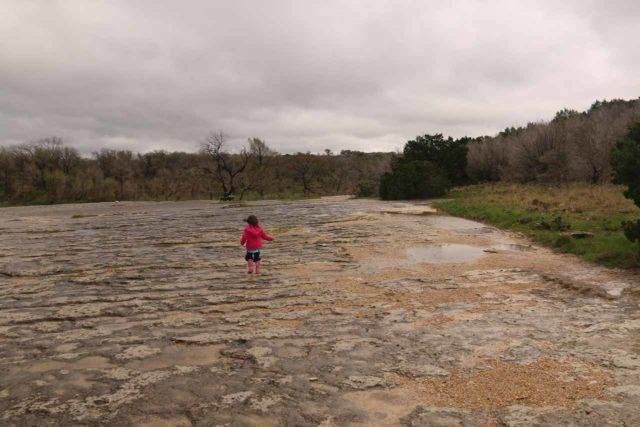 McKinney_Falls_015_03102016 - Tahia walking across the uneven surface of the limestone bedrock on the way to the Lower McKinney Falls