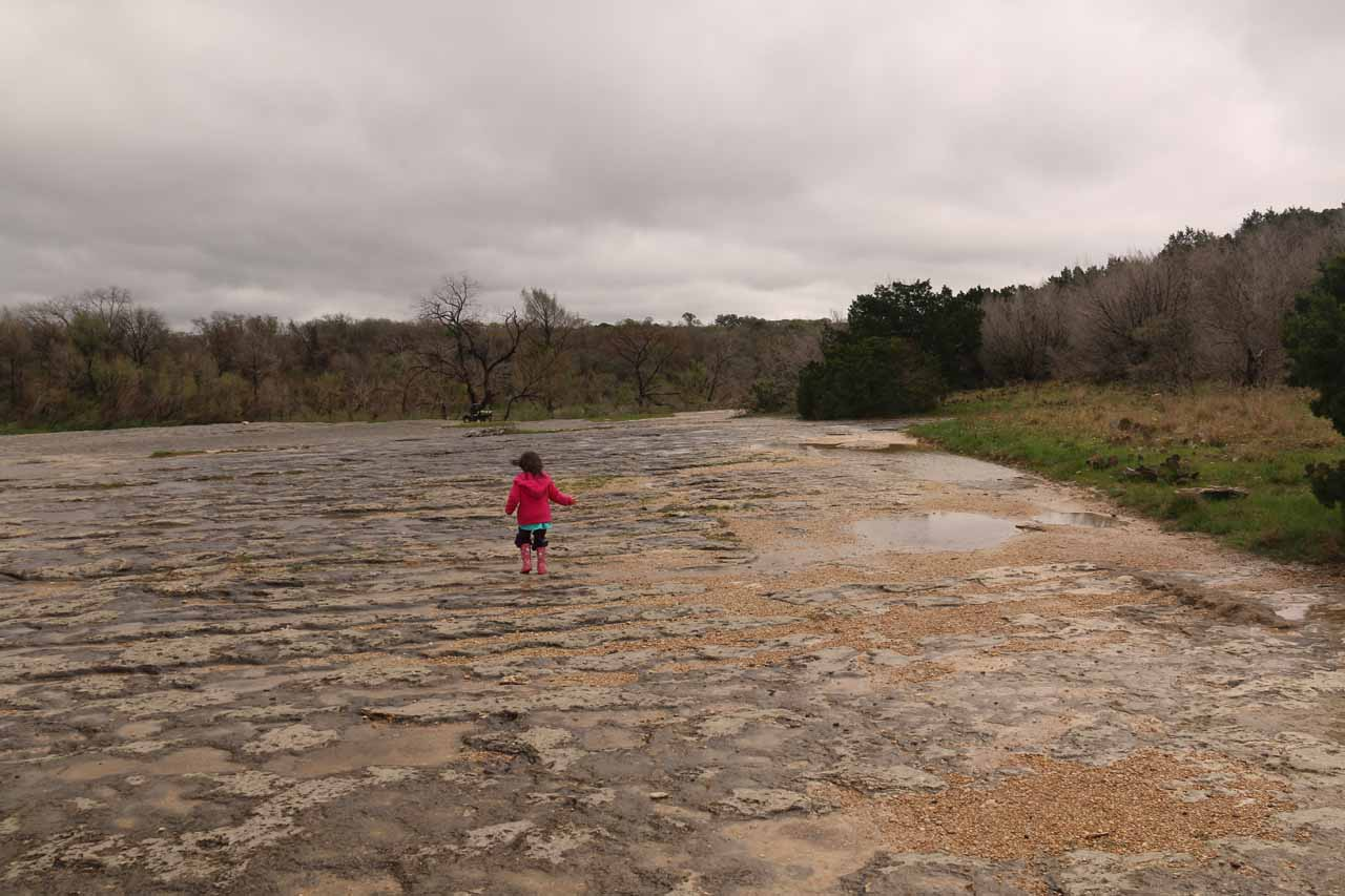 We then had to cross this big exposed limestone field, which was full of potholes (that Tahia liked to splash in) before getting to the Lower McKinney Falls