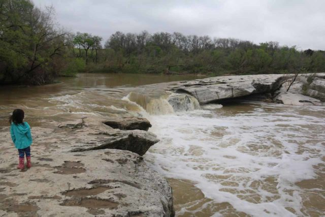 McKinney_Falls_083_03102016 - Tahia standing back from the flow of Onion Creek as well as the dropoffs around the Upper McKinney Falls