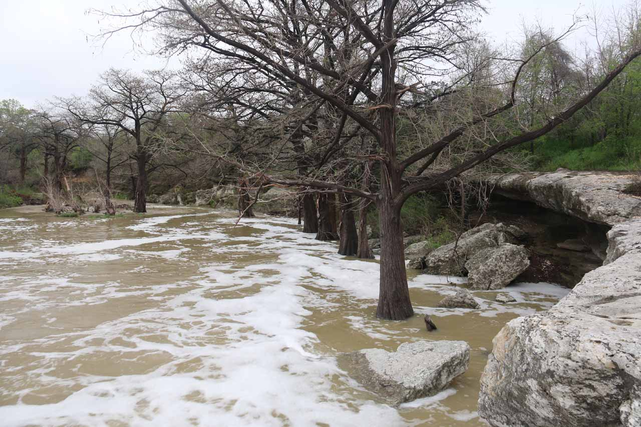 Looking downstream at the swollen Onion Creek. Note the overhang to the right side, which was intriguing but appeared to be off limits, especially with the somewhat flooded conditions