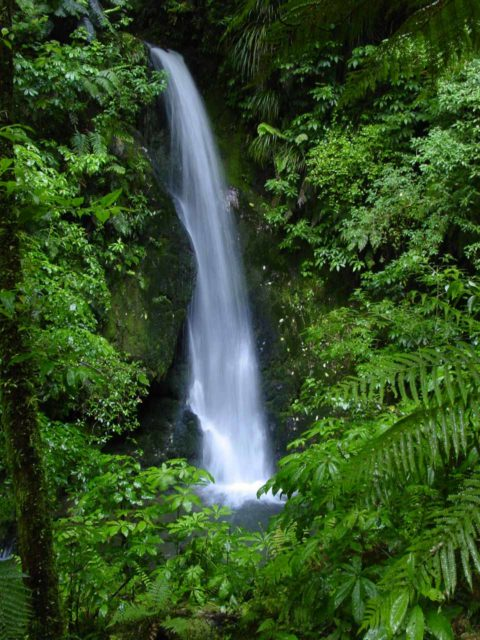 McLarens_Falls_007_11122004 - This was the attractive Marshall Falls, which I thought was prettier than McLarens Falls despite being much smaller