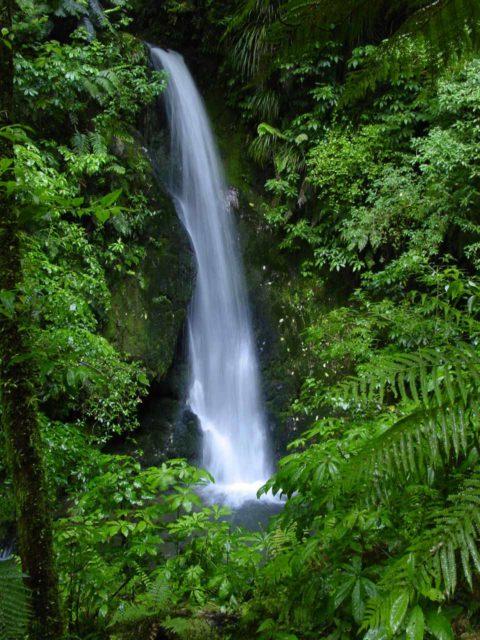 McLarens_Falls_007_11122004 - Marshall Falls