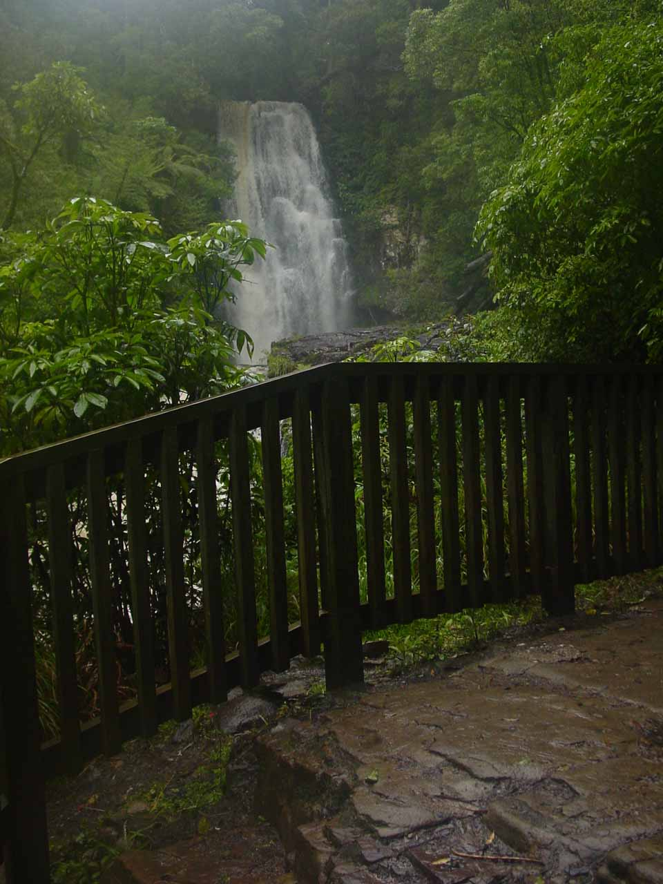 The wooden railings at the lookout for McLean Falls