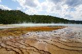 Midway_Geyser_Basin_087_08032020 - Looking across some thermophile lines within the outer fringes of the Grand Prismatic Spring with blue mist rising in the background