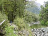 Milford_Track_day2_033_11272004 - Most of the hike for Day 2 of the Milford Track looked very much like this where we were surrounded by native bush while always alongside the Clinton River