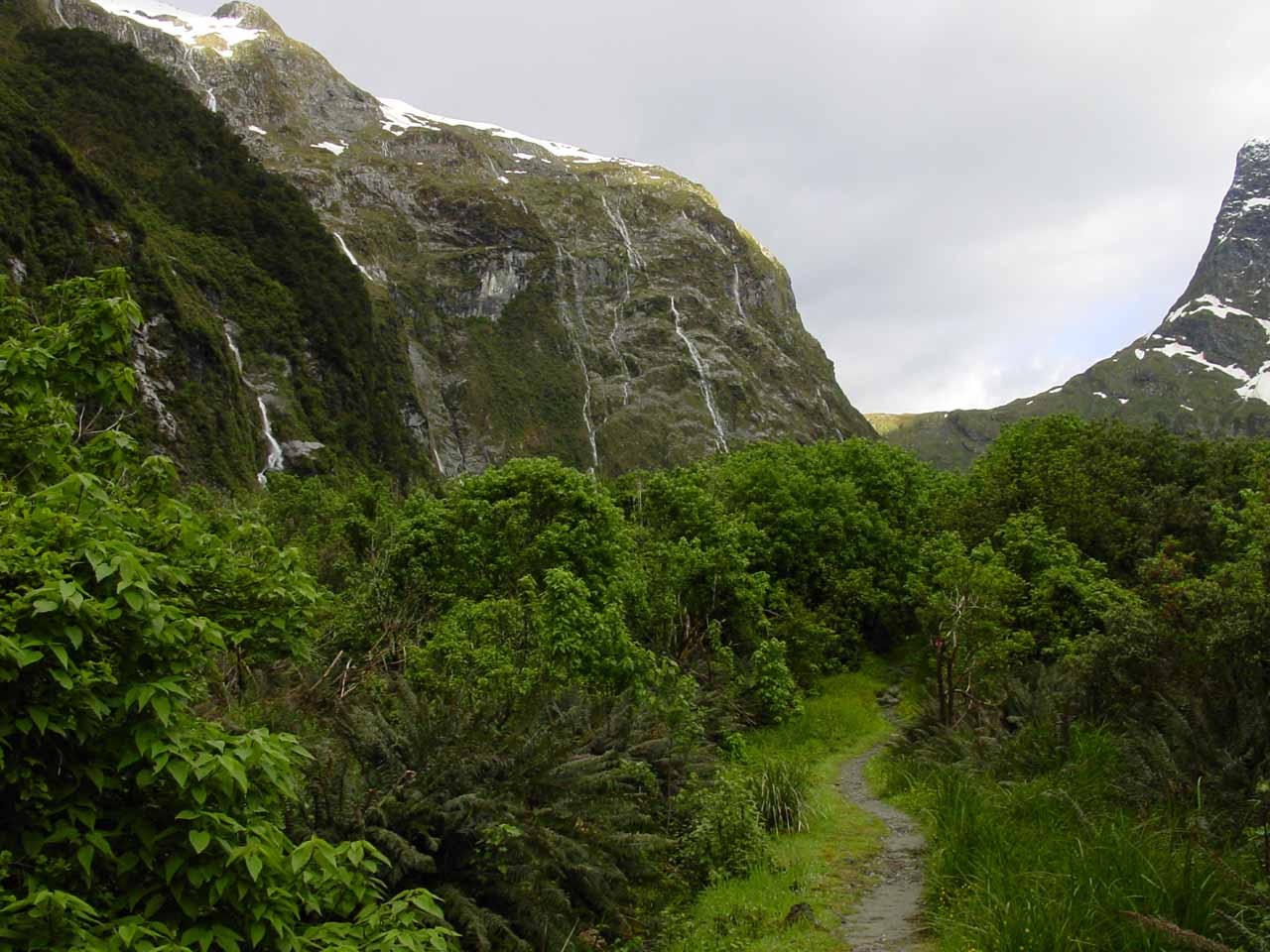 Looking towards Mackinnon Pass and some waterfalls alongside the Milford Track