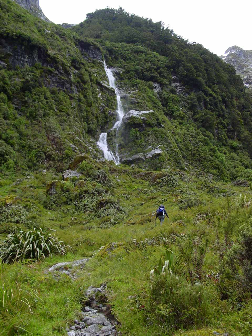 Looking up towards one of the waterfalls along the Milford Track on the way up to Mackinnon Pass