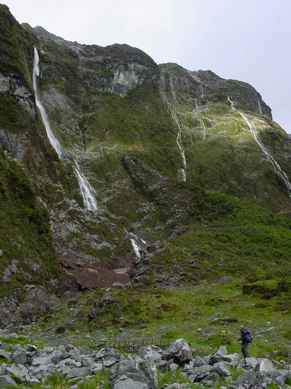 Julie checking out some of the waterfalls on day 3 of the Milford Track