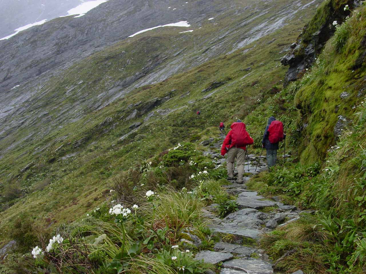 Making the ascent to Mackinnon Pass in foul weather