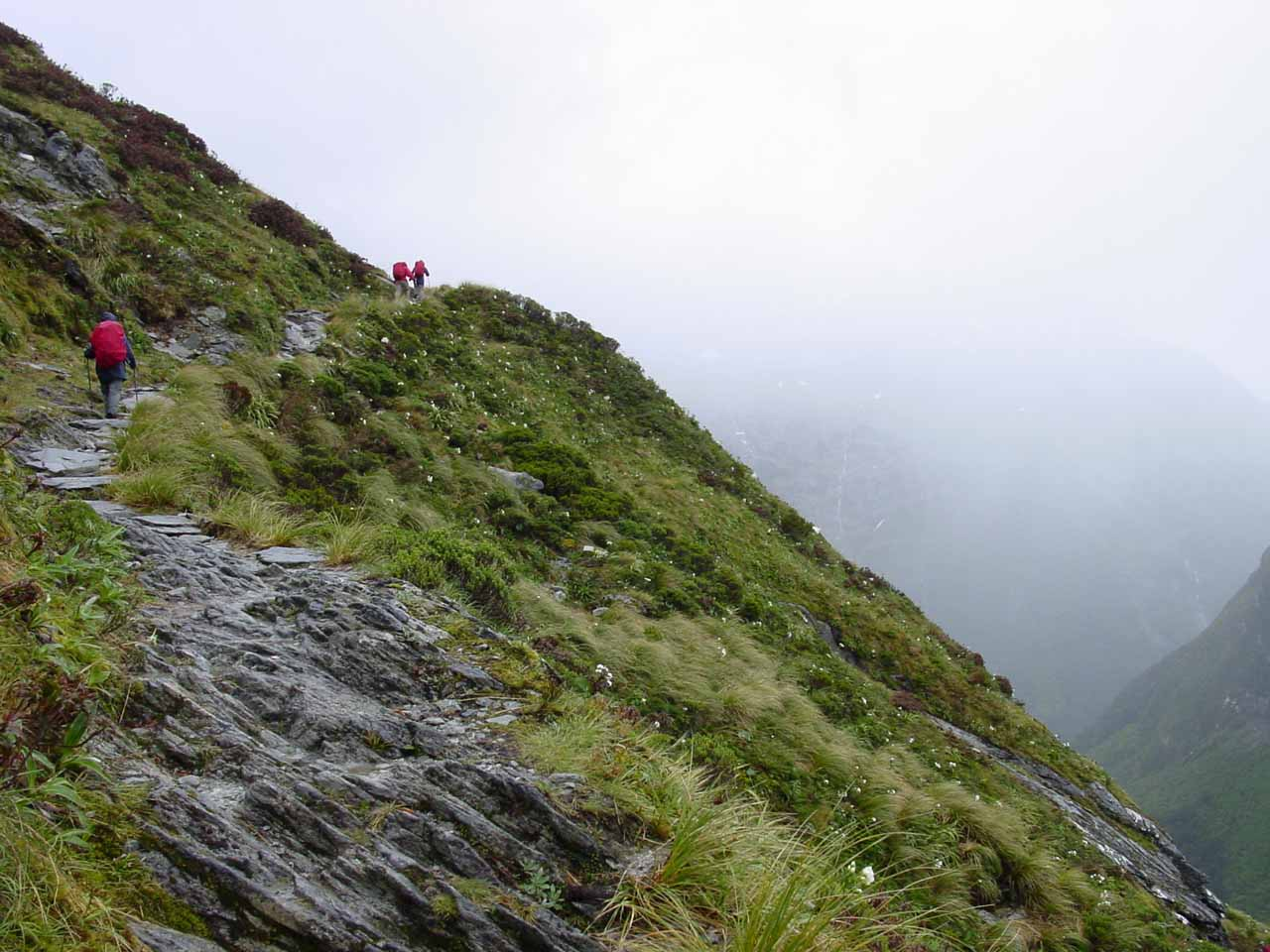 The ascent to Mackinnon Pass in foul weather