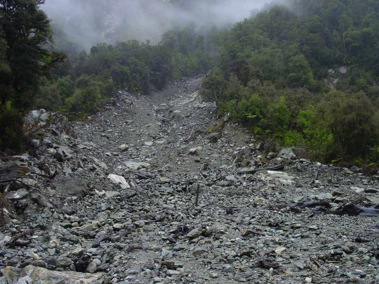 Traversing one of the more extensive landslips, which seemed to be quite common in the history of the Milford Track