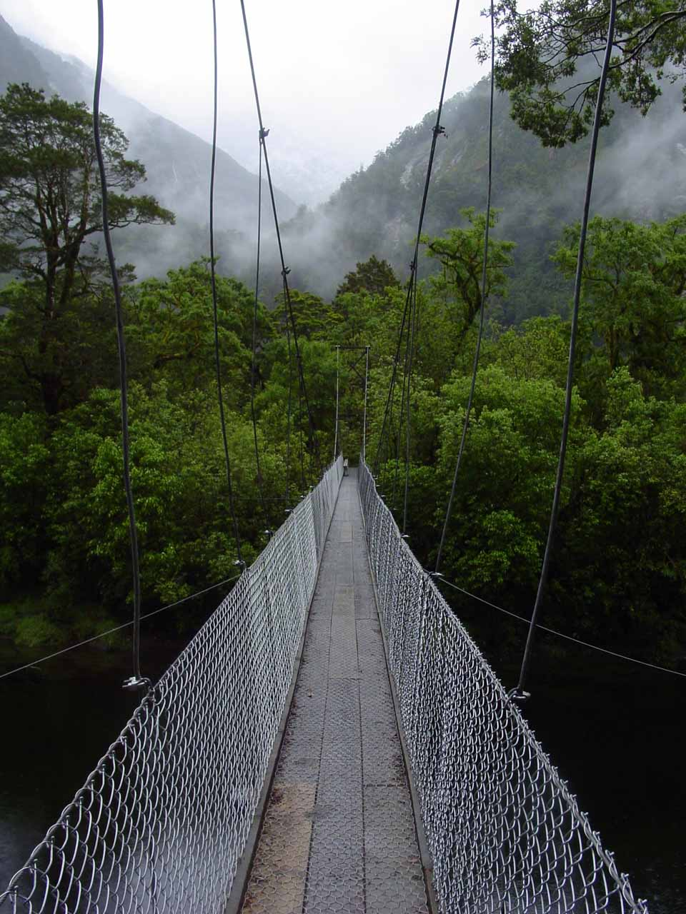 On the swinging bridge over the Arthur River