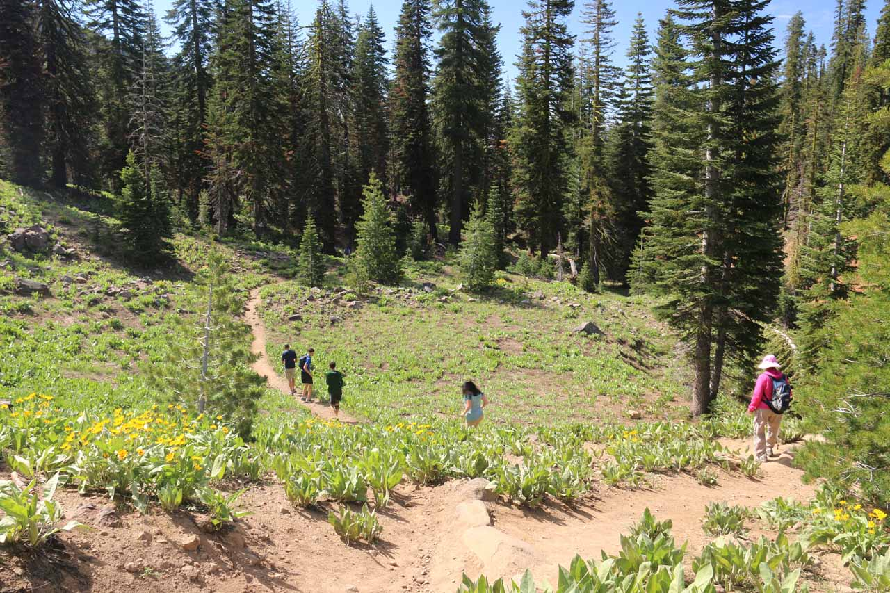 This descent was one of the many trail undulations we had to do before the trail really started to climb as it approached East Sulphur Creek