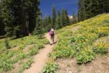 Mill_Creek_Falls_156_06212016 - Mom ascending the hill full of wildflowers before making the final ascent to finish the Mill Creek Falls hike