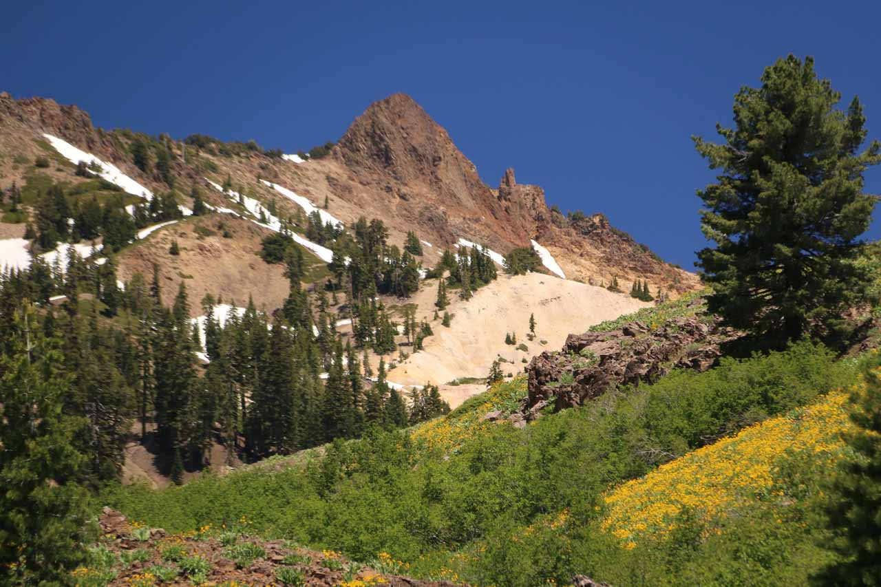 Looking over mats of wildflowers towards one of the colorful peaks. It was real hard not to stop here for a while