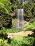 Millaa_Millaa_Falls_019_jx_05172008 - As you can see from this photo, Millaa Millaa Falls was an excellent spot for a picnic
