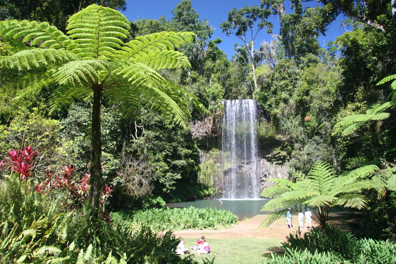 Millaa Millaa Falls at the right time of day