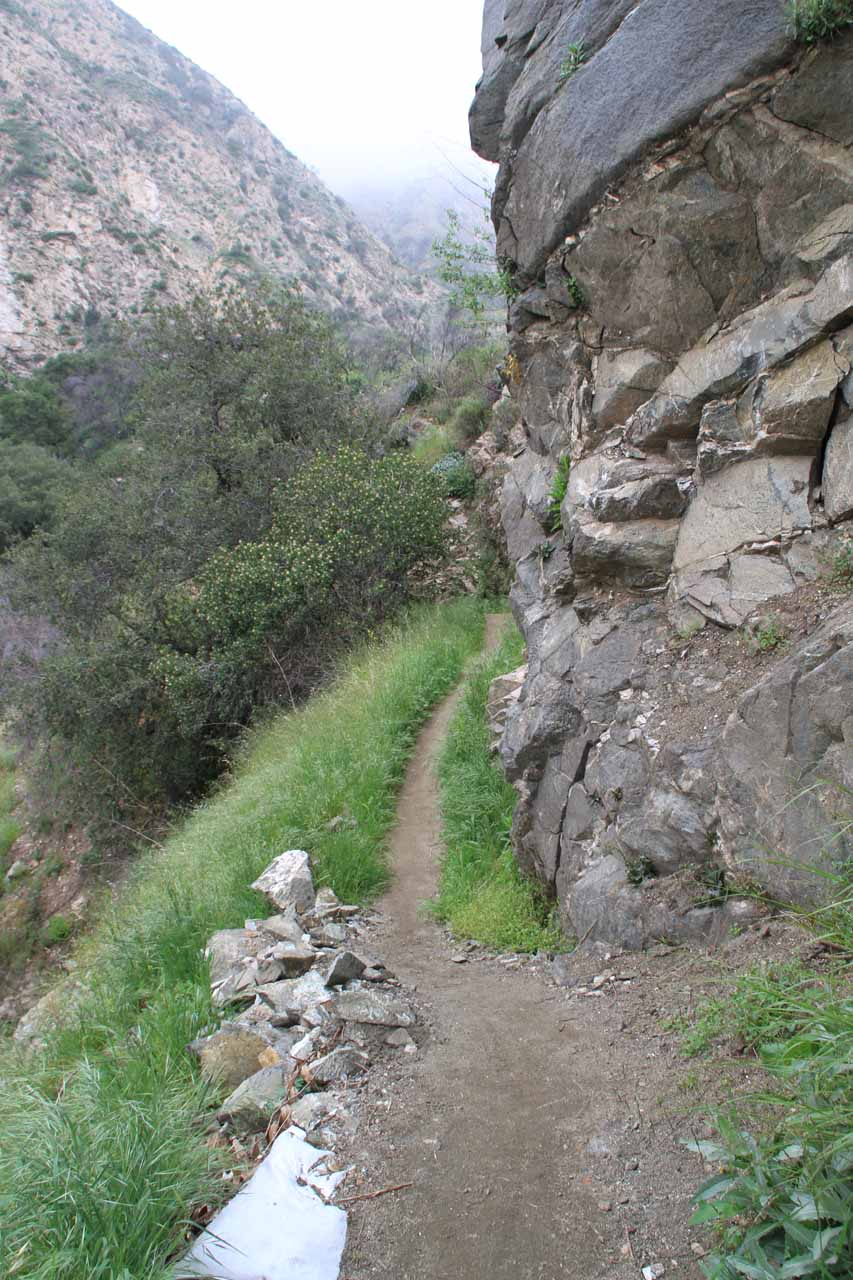 Trail narrowed as canyon closed in