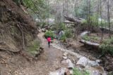 Millard_Falls_16_036_01302016 - Tahia still on the pleasant trail leading to Millard Falls, which seemed to be a little longer than we had remembered it