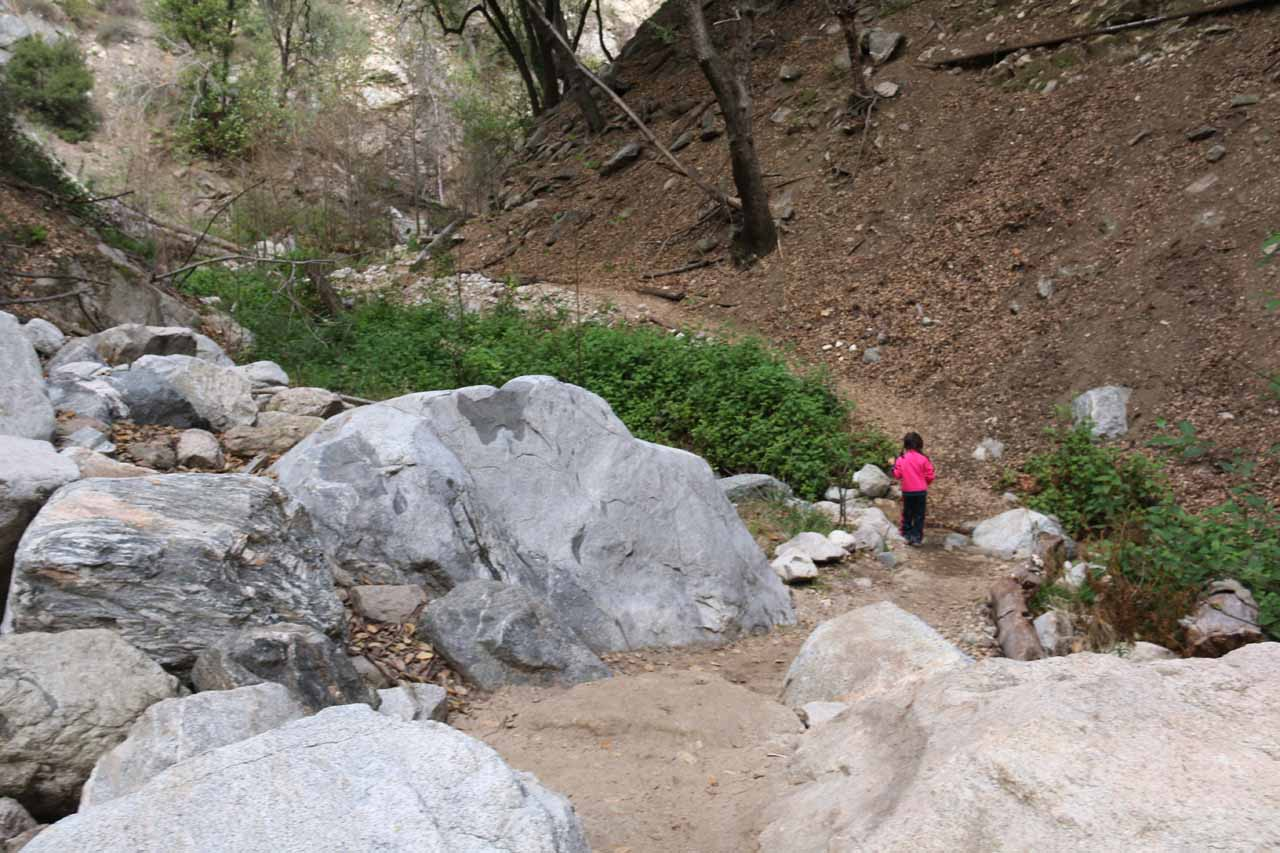 Tahia getting across this very easy crossing amongst some big boulders on the waterfall trail