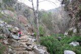 Millard_Falls_16_055_01302016 - Tahia continuing further along the Millard Falls Trail on this slight climb though this trail was pretty much flat the entire way